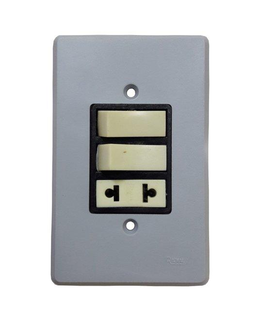 Interruptor Elétrico 2 Teclas Paralelas e Tomada com Placa Cinza - Radial
